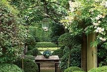Summer Sense / Ideas for bringing a summer feel to your house and garden