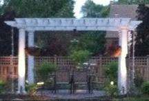 English Garden / My garden.  Thank you Joseph Han!