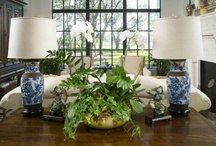 Family Room / by Mary Collins