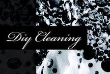 DIY Garment Cleaning