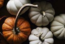 Fabulous Fall / Beautiful fall and Thanksgiving decor with pumpkins and autumnal colors.