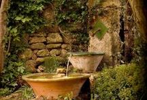 Garden ~ Fire ~ Water ~ Lite