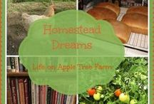 Homesteading and Gardening / Country living, gardening, chickens,
