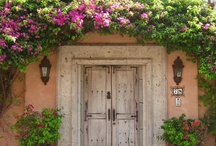 Doors You Want to Open / by Alice Grether