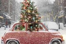 christmas / by Raji Sunner