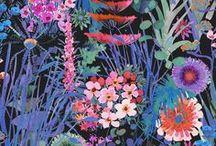 Floral Illustrations / Illustrations of beautiful flowers.