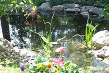 Water in the Garden / Ponds, waterfalls and water features for the landscape