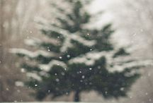 |christmas| / by Aubrey Strong