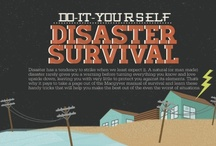 """Survival / Not really for a """"Zombie Apocalypse"""", but you really never know when or if you'll need this stuff. War could break out, it really could be the End of the World (though probably not involving Zombies). / by Melanie Miller"""