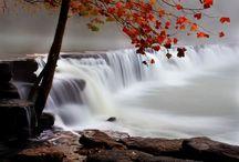 Arkansas / by Mandy Maxwell