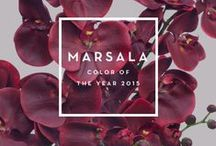Colour for 2015 is Marsala