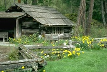 Cabins and Barns / Building Integrated into Nature
