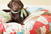 pampered pooch / sewing items for pets - jackets, beds etc. / by daisy and jack