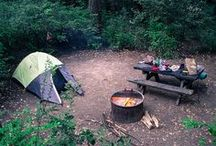 Camping! / This city girls first real camping trip is 8/7. Tips, ideas, and recipes! / by Naomi Berkery