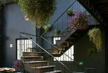 Indoor gardens / Bringing the outside in