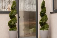 Topiary / Our collection of stunning artificial topiary