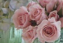 Flowers / by Dawn Larimer