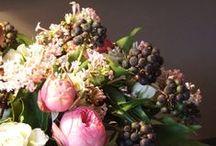 Flowerlicious / by Susan Mernit