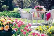 A GARDEN TO LOVE / The garden of your dreams, where you live, love and laugh.  It's the place were life happens!