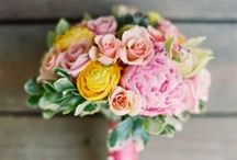 Pretty posies / by SoupAddict