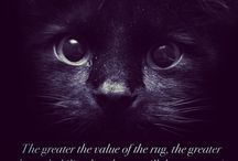 Cats and other little Creatures / I love cats and other creatures some of which are not real!
