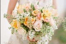 flowers + boquets.