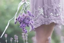 """The Lavender & Orchid of My Grandmother"" / Lavender, Lilac & Orchid Shades My Grandmother always wore these colors and made me dresses out of lavender organdy  / by Nancy Shows"