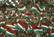 Fluminense Footeboll Club