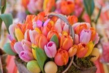 Easter! / Easter ideas, Easter craft ideas, DIY Easter decor, home decor, home decor ideas, Easter flower ideas, spring, spring gardening, holiday recipes, Easter treats, Easter tradition ideas.