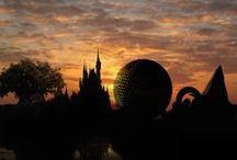 Disney  / by Lorna Hallett