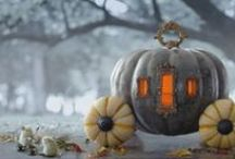 Pumpkins and Squash / by Miko Garcia