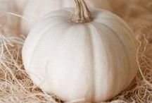 pale as a pumpkin