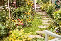 Yard and Garden / Outdoor living, landscape inspiration, outdoor entertaining, yard ideas, garden organization, vegetable gardening, gardening tips and tricks.