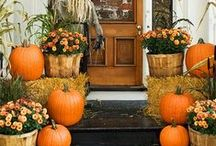 Fall / Fall decor, Halloween, party ideas, Halloween costumes, party ideas, fall harvest, fall gardening, gardening hacks, DIY fall decor, autumn.