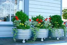 yard and gardening ideas / by Mary Deaton