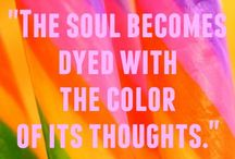 ~Color Crush!~ / by Michelle Howard