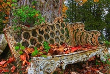 BENCHES 2 SIT ON / by Louise Mumby