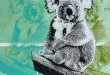 How Much Can A Koala?