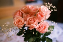 Wedding Flowers / by Jessy George