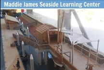 MJSLC Contest Photos / Leading up to the grand opening of the the Maddie James Seaside Learning Center we are hosting a trivia giveaway on Facebook: https://www.facebook.com/OceanInstitute.  If you would like to participate please head over to Facebook and post your answers in the comments.