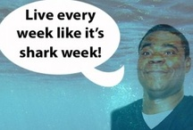 Live Every Week Like It's Shark Week / by 30 Rock