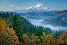 Hood River Oregon / Magnificent pristine scenery in #HoodRiver #Oregon. Go for the #wine, fall in love with the waterfalls.