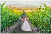 Weddings / Call us sentimental, but at Gloria Ferrer, we love weddings! Whether at our winery and vineyards or another special venue, weddings are events to treasure for a lifetime.  / by Gloria Ferrer Caves & Vineyards