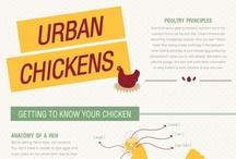 Design | Infographics / by Leisha Scallan