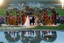 Wedding Photos / Artistic wedding photos of rings, couples, bridal party, and details that we love. Find adorable photos and inspirational ideas on this board.