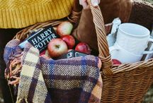 bash | picnic / picnic styling and food ideas