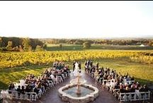 Vineyard Wedding / by Events Beyond