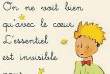Mon Petit Garçon  / by Ginger Brown