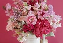 ❀ Perfumes...the feelings of flowers ❀