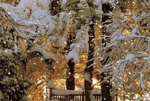 ❄*❋Winter Wonderland❋*❄ / Snowflakes spill from heaven's hand  / by Susan Moore